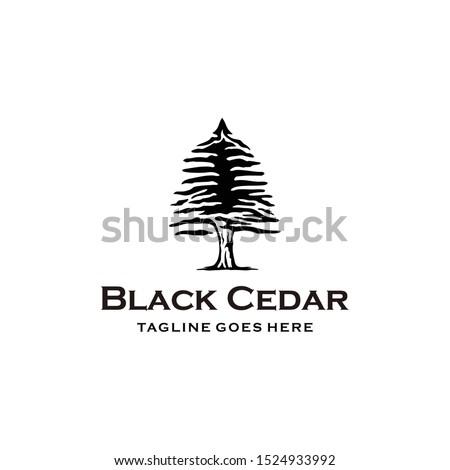 Illustration Rustic Retro Vintage Evergreen, Pines, Spruce, Cedar trees logo design