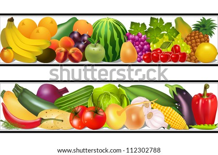 illustration set food vegetables and fruits painting vector damp