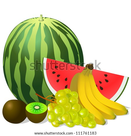 illustration still life fruits banana watermelon grape kiwi