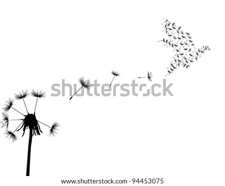 illustration with black dandelion on white background