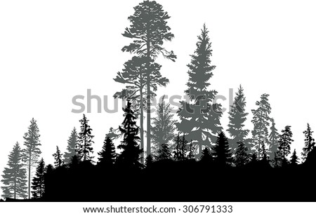 illustration with black forest