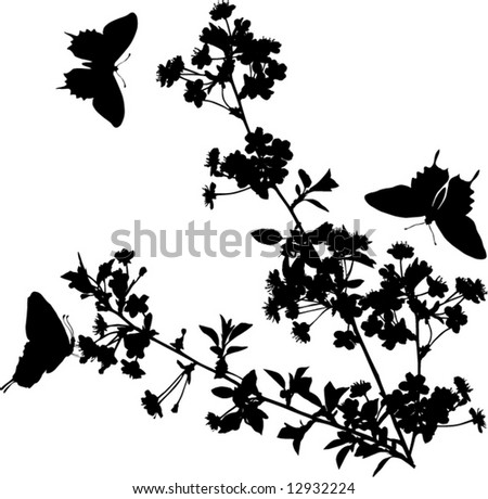 illustration with cherry tree flowers and butterflies silhouette on white background