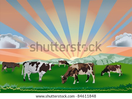 illustration with cows on green field