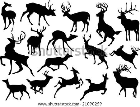 Line Drawing Deer : Christa pierce illustration falling leaves drawing deer and