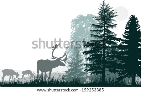 illustration with deers in