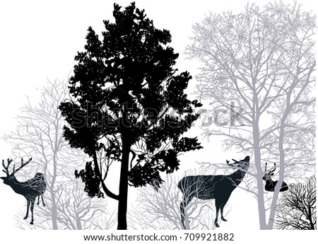 illustration with deers in forest isolated on white background
