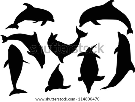 illustration with dolphins
