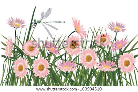 illustration with dragonfly and ladybirds on pink flowers