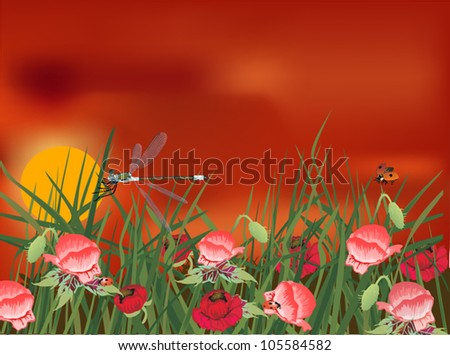 illustration with dragonfly on red poppy field #105584582