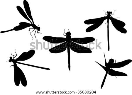 Clip Art Dragonflies. WHITE DRAGONFLY CLIPART