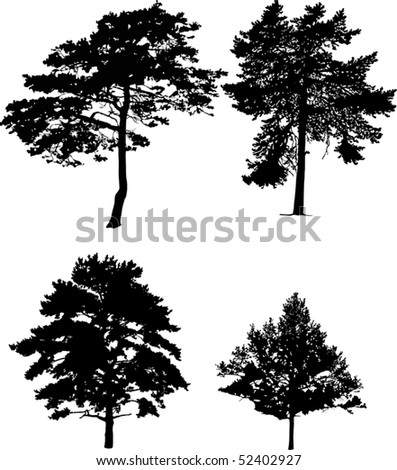 illustration with four pine silhouettes isolated on white background
