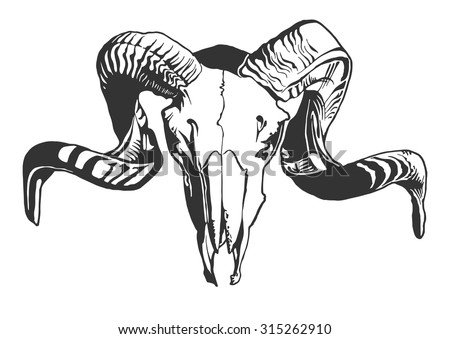 illustration with goat skull