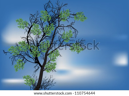illustration with green tree at blue sky background