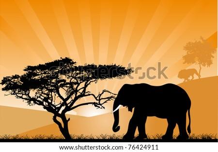 illustration with orange sunset
