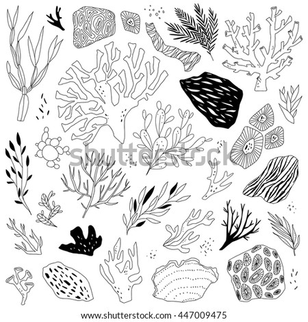 illustration with sea life