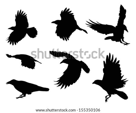 illustration with set of eight