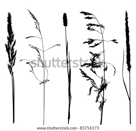 illustration with set of plant silhouettes isolated on white background