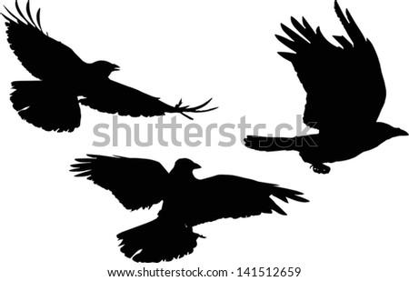 illustration with set of three