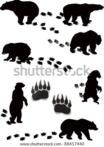 illustration with seven bears and tracks isolated on white background