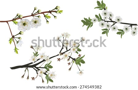 illustration with spring tree