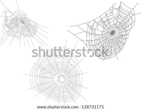 illustration with three spider
