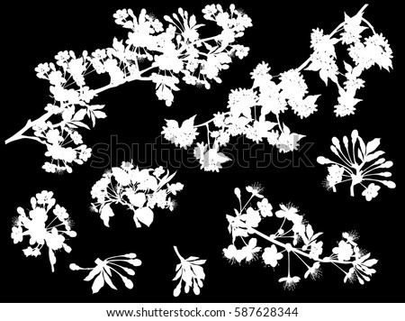 illustration with tree flowers silhouettes on black background
