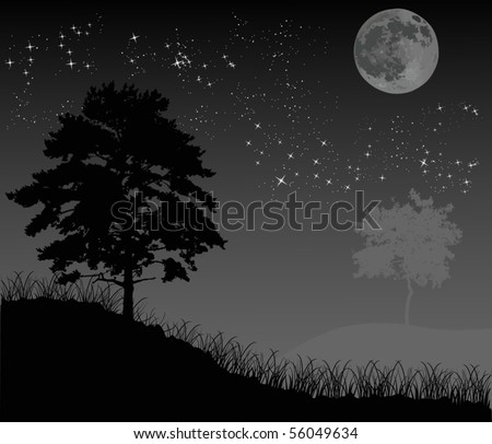 with trees under night sky