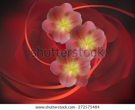 illustration with tulip flowers on dark background
