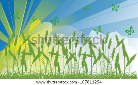 illustration with wheat and butterflies silhouettes at sunset