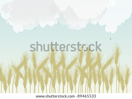 illustration with wheat field under cloud sky