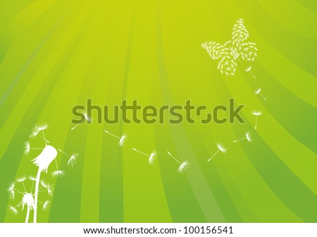 illustration with white dandelions and butterfly on green background