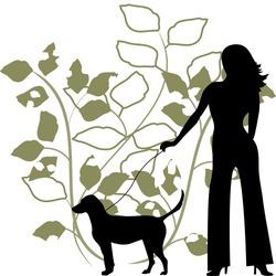illustration woman walking dog