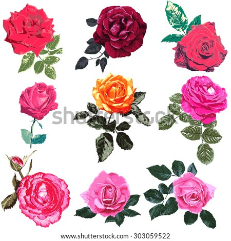 illustrations of red roses