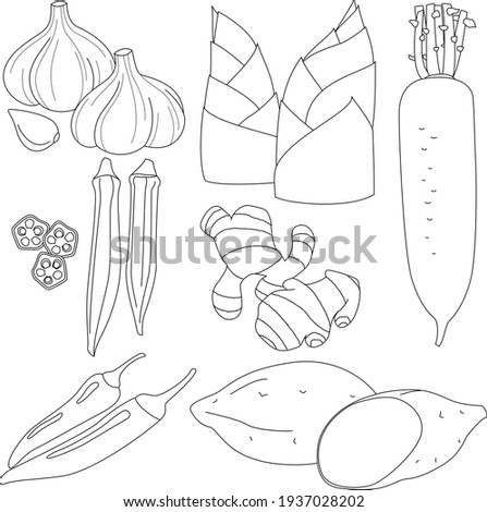 Illustrations of various vegetables and condiments (line drawings) Stock fotó ©