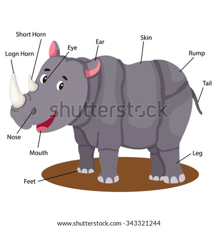 illustrator of rhinoceros body