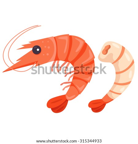 Shutterstock Illustrator of shrimp