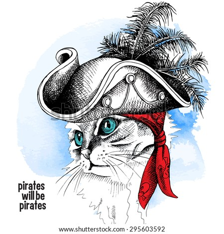 image cat portrait in a pirate