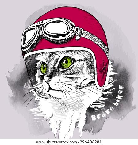image cat portrait in retro