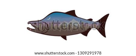 image fish salmon