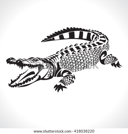 image graphic style of crocodile  isolated on white background