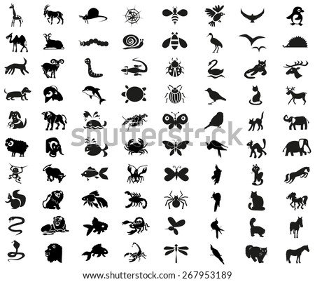 Image icons of different animals, insects, arthropods and birds.