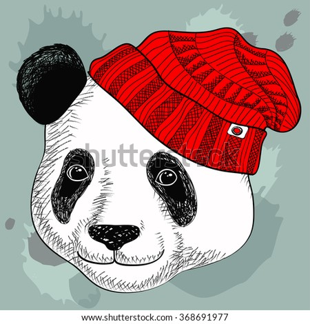 image of panda in knitted hats