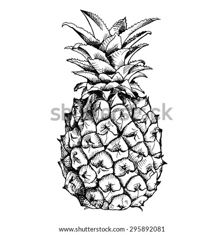 image of pineapple fruit
