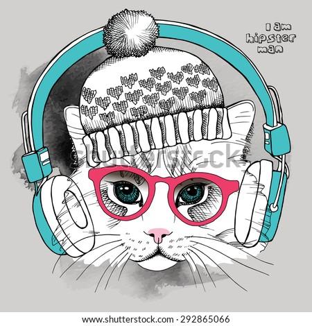 image portrait cat in the