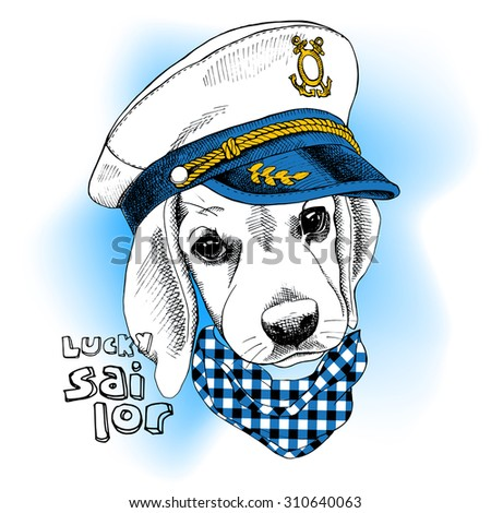 image portrait dog in a sailor