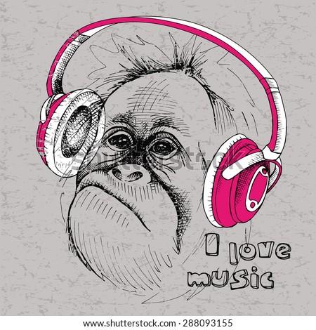 image portrait monkey with