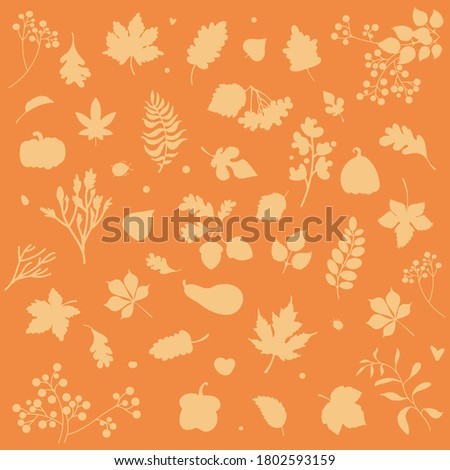 image with leaves on an orange