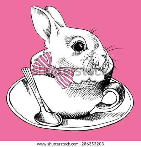 images of the rabbit in the cup
