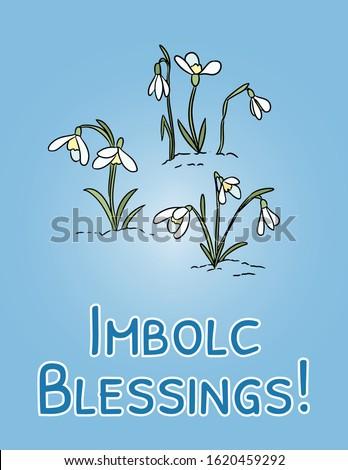 Imbolc Blessings beginning of spring pagan holiday postcard. Snowdrops symbol. Vector banner