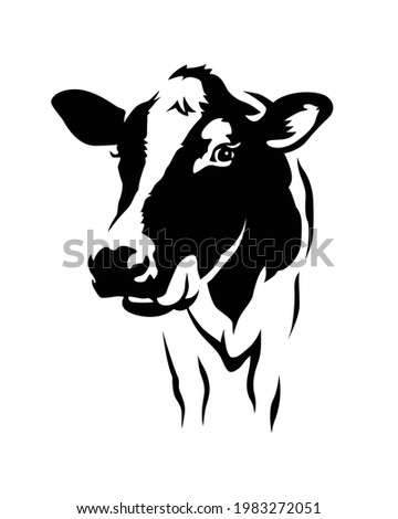 Indian jersey cow vector isolated. British breed of small dairy cattle from Jersey. Domestic animal or milk farm animal. Cattle.